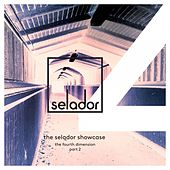 Selador Showcase - The Fourth Dimestion, Pt.2 by Various Artists