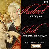 Schubert: Impromptus - Suk: Serenade in E-Flat Major, Op. 6 by Various Artists