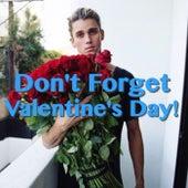 Don't Forget Valentine's Day! von Various Artists