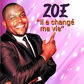 Play & Download Il a changé ma vie by Zoé | Napster