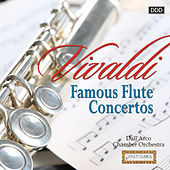 Vivaldi: Famous Flute Concertos by Dall'Arco Chamber Orchestra and Istvan Parkanyi