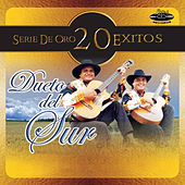 Play & Download Serie de Oro 20 Éxitos by Dueto del Sur | Napster
