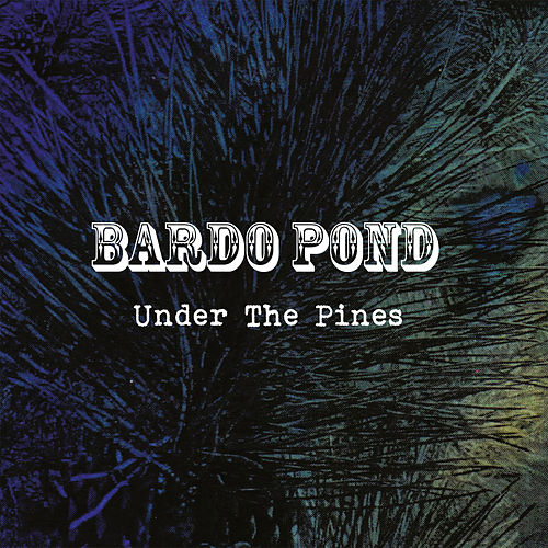 Play & Download Under The Pines by Bardo Pond | Napster