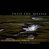 Play & Download Into The Mystic: An Instrumental Tribute To Van Morrison by Van Morrison | Napster