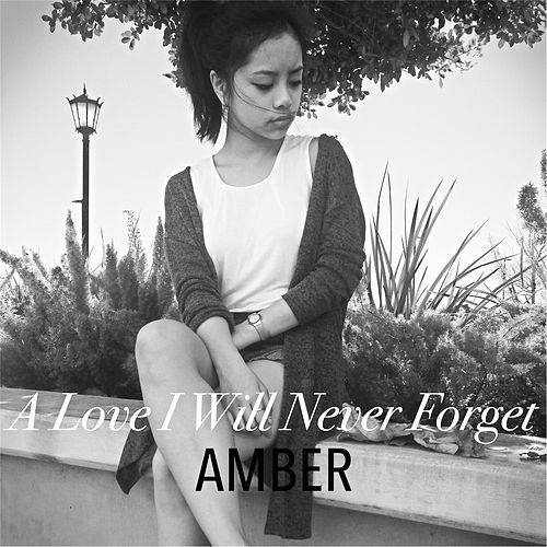 Play & Download A Love I Will Never Forget by Amber | Napster