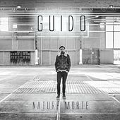 Nature Morte by Guido