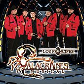 Una Nueva Era by Alacranes Musical