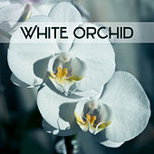 Play & Download White Orchid - Moment to Breath, Wonderful Glow, Heavenly Light, Holy Peace by soundscapes | Napster