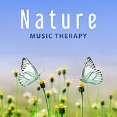 Nature Music Therapy – Relaxing Music, Stress Relieve, Reduce Anxiety, Calm Down, Relax by Calming Sounds