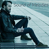 Sound of Melodies - Moment of Peace, Voice of Sound, Meditation and Rest, Time for Breath by Natural Sounds