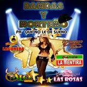 Bandas y Norteno, Vol. 1 by Various Artists