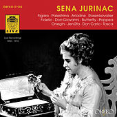 Play & Download Sena Jurinac by Sena Jurinac | Napster