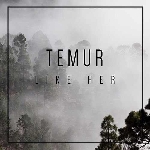 Like Her by Temur