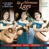La Flor De La Canela by Various Artists