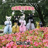 Concert in the Flower Garden by Claricat Kotofue Papillon