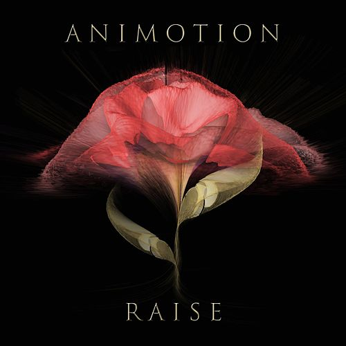 Play & Download Raise Your Expectations by Animotion | Napster