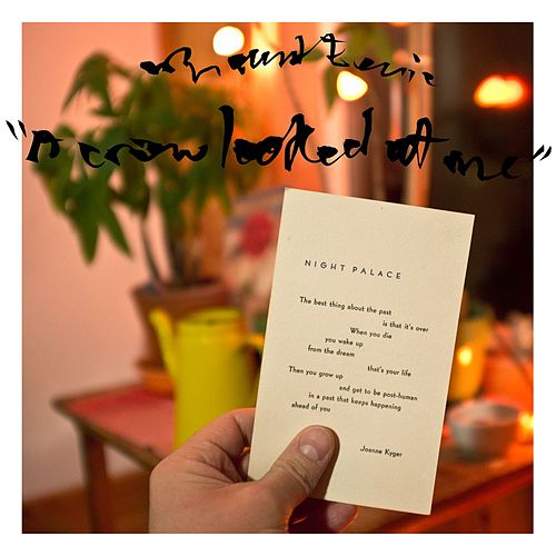 Play & Download A Crow Looked at Me by Mount Eerie | Napster