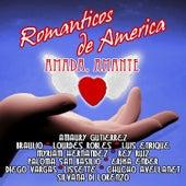 Play & Download Románticos de America: Amada, Amante by Various Artists | Napster