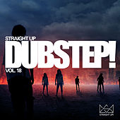Straight Dubstep! Vol. 18 by Various Artists