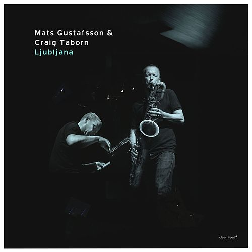 Play & Download Ljubljana by Craig Taborn | Napster