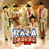 Play & Download Ritmo, Amor y Pueblo by Raza Obrera | Napster