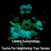 Calming Surroundings Tracks For Heightening Your Senses by Meditation Music Zone