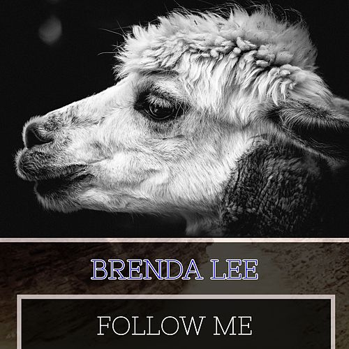 Follow Me de Brenda Lee