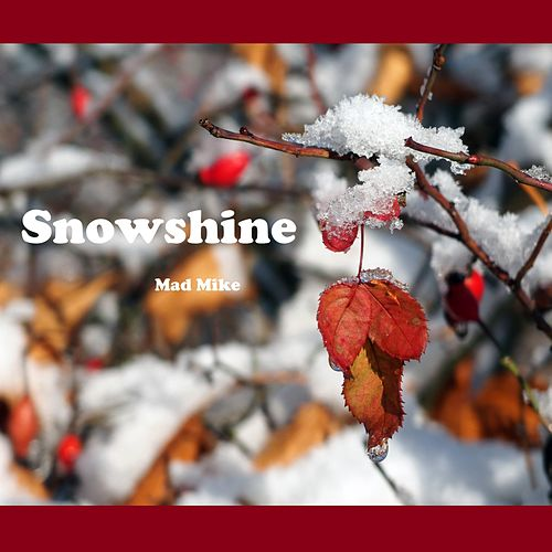 Snowshine by Mike Banks