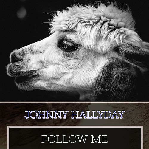 Follow Me de Johnny Hallyday