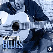 Play & Download We Got the Blues, Vol. 1 by Various Artists | Napster