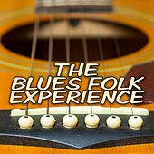 The Blues Folk Experience by Various Artists