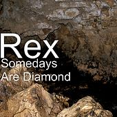 Somedays Are Diamond by Rex