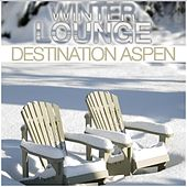 Winter Lounge Destination Aspen by Various Artists