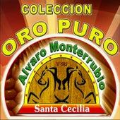 Play & Download Coleccion Oro Puro by Alvaro Monterrubio | Napster