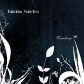 Viandanze by Fabrizio Paterlini