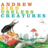 Useless Creatures by Andrew Bird