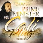 Cali Plug by Various Artists