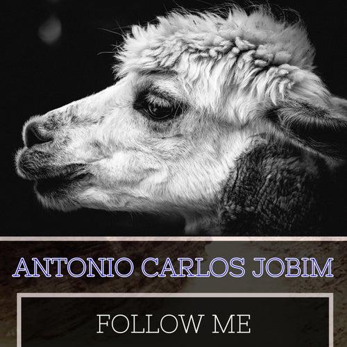 Follow Me by Antônio Carlos Jobim (Tom Jobim)
