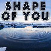 Shape of You (Instrumental) by Kph
