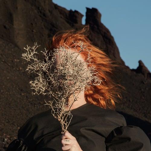 Silver Eye von Goldfrapp