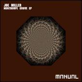 Nunthorpe Grove EP by Joe Miller