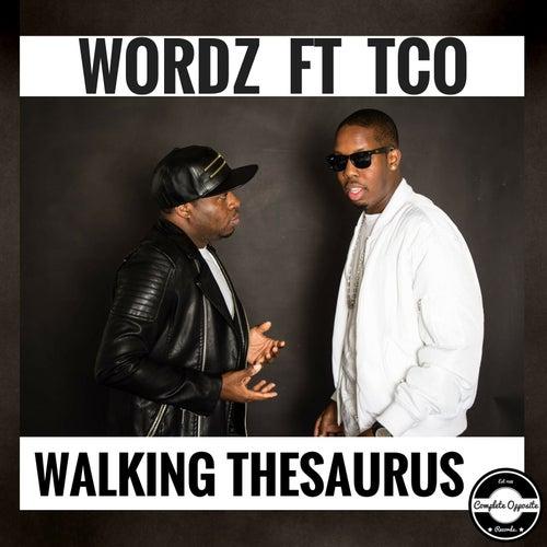 Walking Thesaurus (feat. Tco) by Wordz