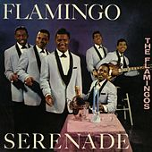 Play & Download Flamingo Serenade by The Flamingos | Napster