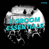 Play & Download Bigroom Essentials by Various Artists | Napster