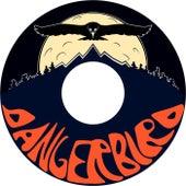 Play & Download DangerBird by Danger Bird | Napster