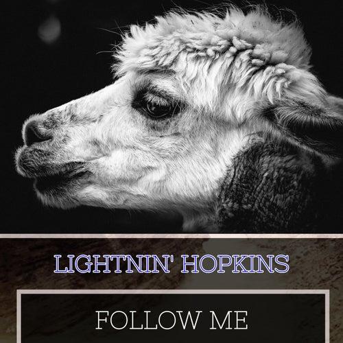 Follow Me by Lightnin' Hopkins