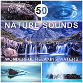 50 Nature Sounds: Wonderful Relaxing Waters - Music for Deep Sleep, Total Rest & Relaxation, Healing Power of Water, Rain, Waterfall, Stream, Sea & Ocean Sounds by Calming Water Consort