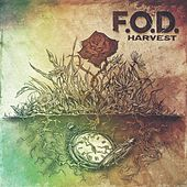 Play & Download Harvest by F.O.D. | Napster