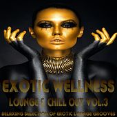 Exotic Wellness Lounge and Chill Out, Vol. 3 (Relaxing Selection of Erotic Lounge Grooves) by Various Artists
