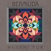 Play & Download Nedeni Yok by Bermuda | Napster